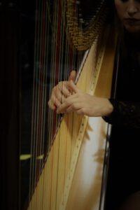 Musikschule Remagen Partner Harfe
